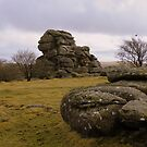 Dartmoor: Vixen Tor by Rob Parsons