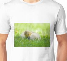 Sleeping Gosling Unisex T-Shirt