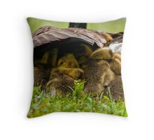 Nappy Time 2 - Ottawa, Ontario Throw Pillow