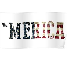 'Merica Text  Poster