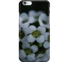 little bloom iPhone Case/Skin