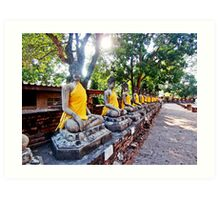 Buddha Images in Seasonal Robes Art Print
