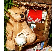Teddies in a Tree House Photographic Print
