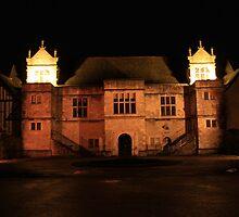 Archbishop's Palace at Night by Dave Godden
