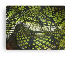 Deadly & Green Canvas Print
