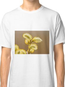 Spring Time Pussy Willow Classic T-Shirt