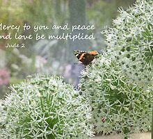 Allium flowers with butterfly and Bible verse of Jude 2 by Deborah Berry
