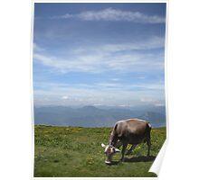 Monte Baldo Poster