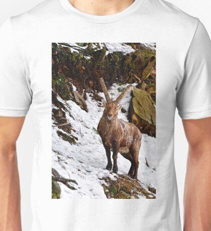 Ibex in Winter Unisex T-Shirt