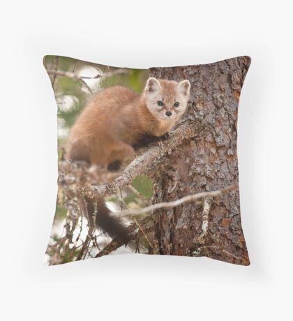 Pine Marten In Pine Tree Throw Pillow