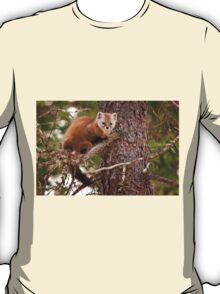 Pine Marten In Pine Tree T-Shirt