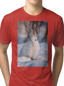 Snow Shoe Hare Tri-blend T-Shirt
