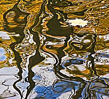 Water Patterns by Monnie Ryan