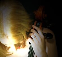 In a Cello of Beauty by Takingtheimage