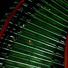 Neon Staircase by Rosemary Sobiera