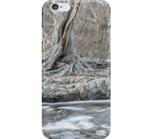 Twisted Tree Along the River Bend iPhone Case/Skin