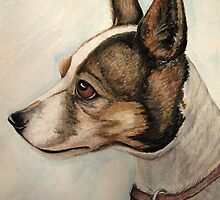 Jack Russell Portrait by Pam Utton