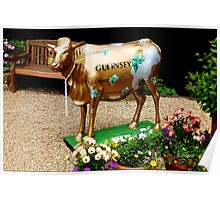 Stylish Guernsey Cow Poster