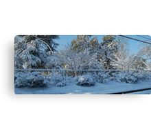 Snow Fence #1 Canvas Print