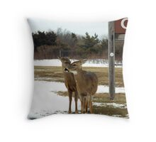 Pssst...hey listen up...the good food is across the road! Throw Pillow