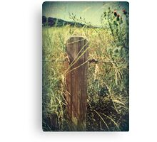 With Every Passing Moment Canvas Print