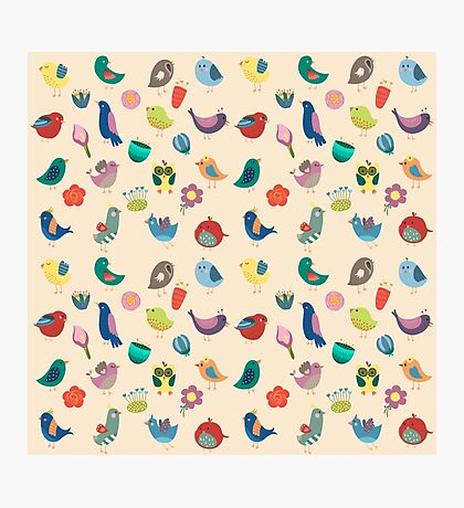 Vintage Birds and Flowers Photographic Print