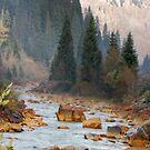 Rain River by CowGirlZenPhoto