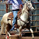 Handsome Is by CowGirlZenPhoto