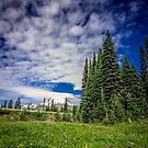 Mt Rainier, Washington by Jonicool