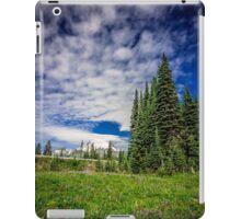 Mt Rainier, Washington iPad Case/Skin