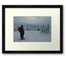 Snowy Reflection on Cascade Framed Print