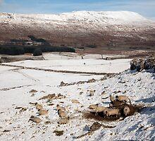 Whernside - Yorkshire's Highest Peak by SteveMG