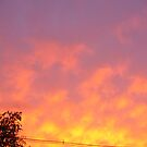 my sky on fire by Doreen Connors