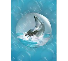 Bubble Dolphin Photographic Print
