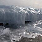 Last Ice on the Shore by loralea