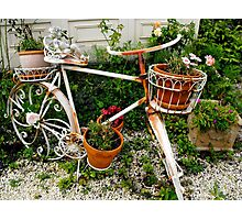 Bike at the Victoria Bed and Breakfast Photographic Print