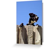 Winston Watches Greeting Card
