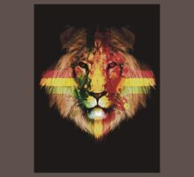 The Rasta Lion by jay007