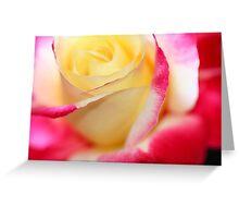 Rose dream macro Greeting Card