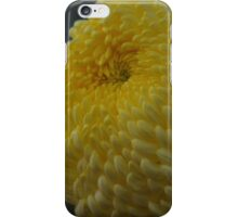 Yellow Chrysanthemum at Conservatory iPhone Case/Skin