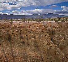 Slot Canyon, Borrego by Robert Whiteman