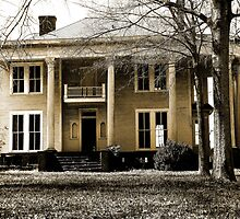 """""""Classic Southern Charm Home Begging For Love"""" by franticflagwave"""
