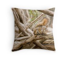 Outta of my Way!! Throw Pillow