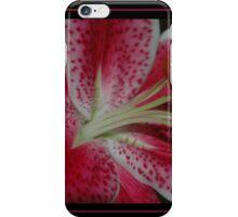 Stargazer iPhone Case/Skin