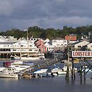Beautiful Boothbay Harbor by Monnie Ryan