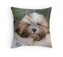 Lhasa Apso baby puppy Throw Pillow