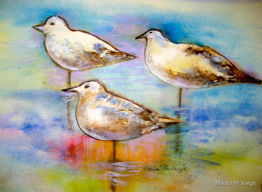 Seagulls by Marita McVeigh