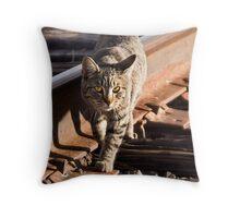 Rail Cat Throw Pillow
