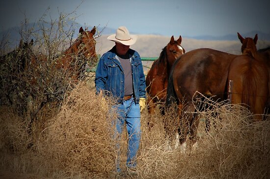 Whatchya Think'n Cowboy? by CowGirlZenPhoto