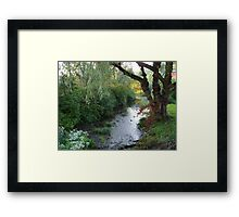 Willow by the Wood Framed Print